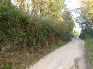 Una strada di campagna