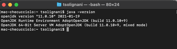 java version terminale
